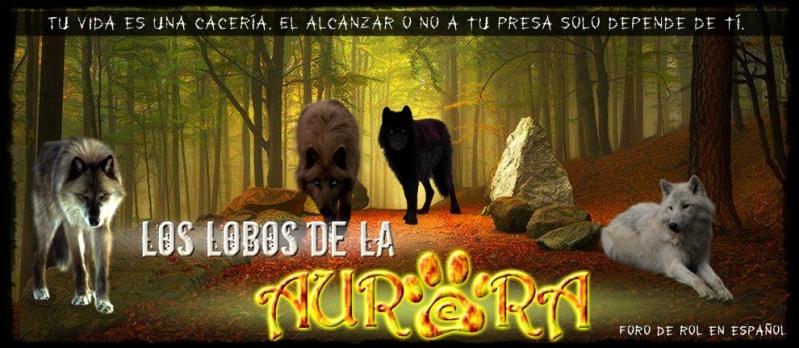 Lobos de la Aurora