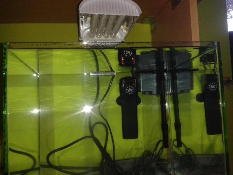 aquarium nano pour crevette 13350510