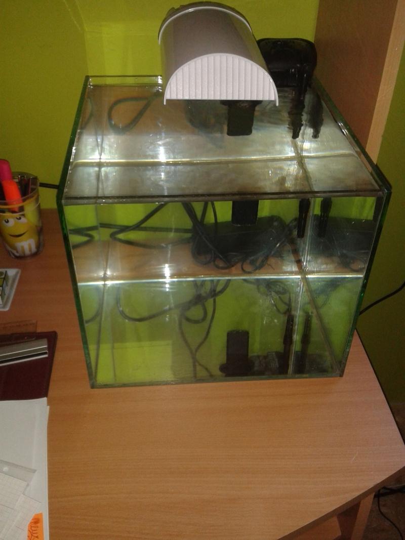 aquarium nano pour crevette 13403210