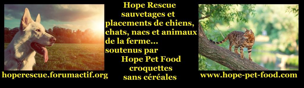 Hope rescue