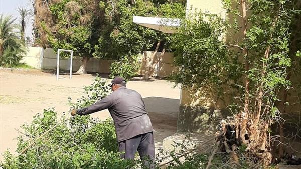 مدير مدرسة يشرف على قطع الأشجار والنخيل بنفسه خوفًا على الطلاب من الخطر 44611