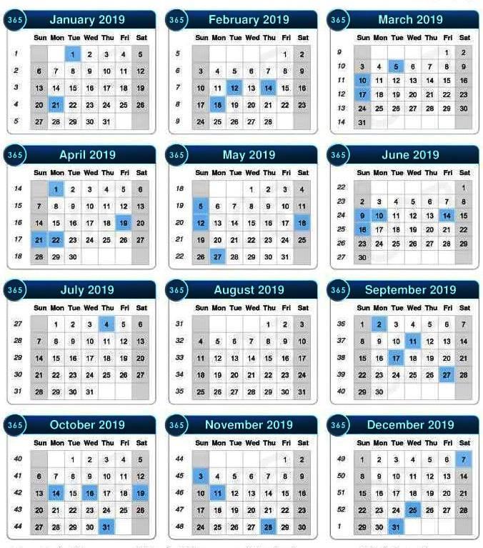 نتيجة سنة 2019-1440 وأيام الاجازات والأعياد في مصر 2019  48412510