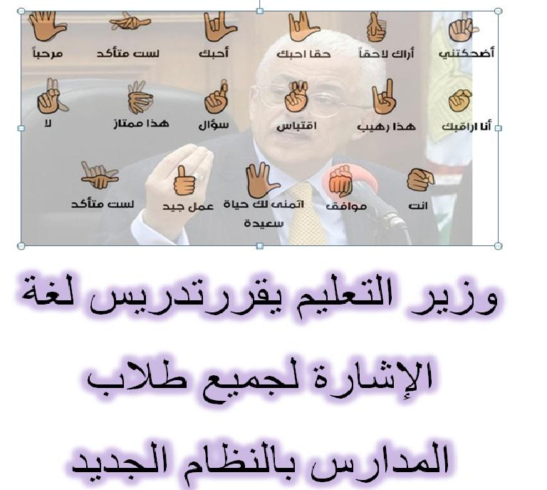 وزير التعليم يقررتدريس لغة الإشارة لجميع طلاب المدارس بالنظام الجديد 87382310