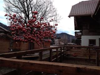 Размышлял ли Иисус о елке с красными шарами? Qmfviz10