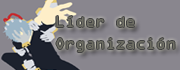 Líder de Organización