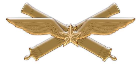 le 61e Régiment d'Artillerie reçoit un nouvel insigne de béret Insi10