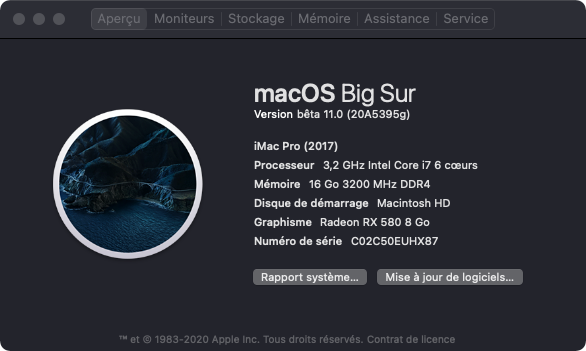 macOS Big Sur 11 Beta - Page 11 Aa_pro10
