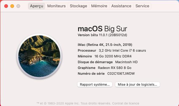 macOS Big Sur 11 Beta - Page 11 Captur10