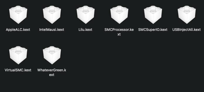 MacOS Big Sur Problèmes d'utilisation - Page 2 Kexts10