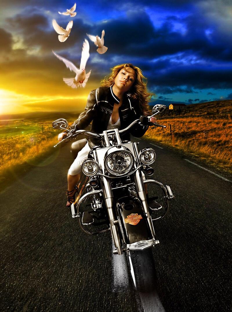 Ils ont posé avec une Harley, uniquement les People - Page 6 2c2f1810
