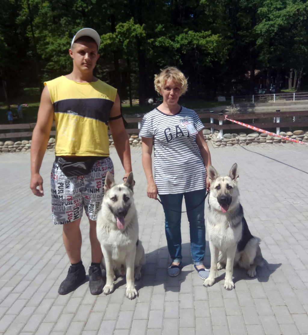 ВОСТОЧНО-ЕВРОПЕЙСКАЯ ОВЧАРКА ВЕОЛАР НОРРИС-МАРФА Ea_a_a10