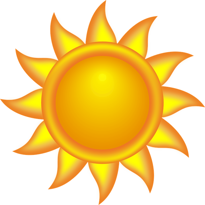La importancia de la luz solar para nuestros loros Sol11