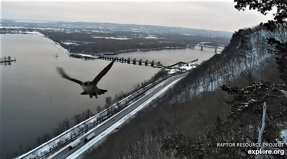 Minnesota. Boswell, G.S.B. Falcons, Hibbard,Xcel Energie (King/Sherco/Blackdog) Great River Energy, Rochester/ Mayo Clinic - Pagina 4 01_lan10