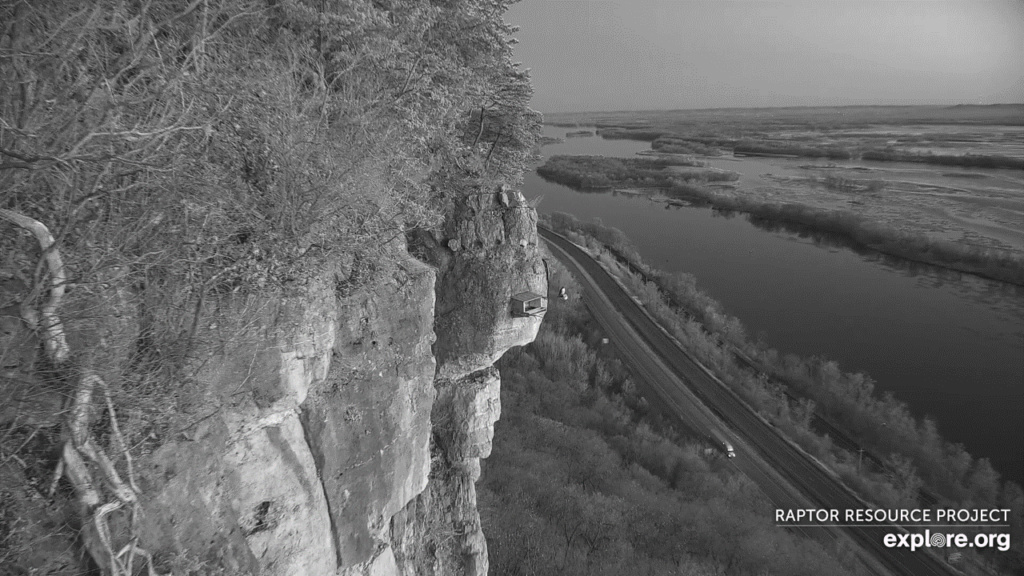 Minnesota. Boswell, G.S.B. Falcons, Hibbard,Xcel Energie (King/Sherco/Blackdog) Great River Energy, Rochester/ Mayo Clinic - Pagina 3 02_vla10