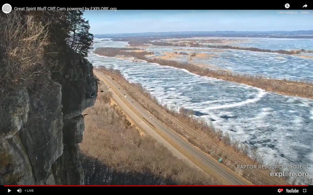 Minnesota. Boswell, G.S.B. Falcons, Hibbard,Xcel Energie (King/Sherco/Blackdog) Great River Energy, Rochester/ Mayo Clinic - Pagina 2 0308ni12