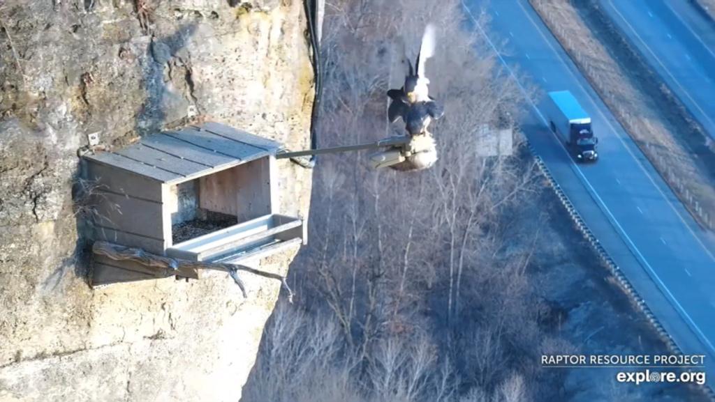 Minnesota. Boswell, G.S.B. Falcons, Hibbard,Xcel Energie (King/Sherco/Blackdog) Great River Energy, Rochester/ Mayo Clinic - Pagina 5 11_par10