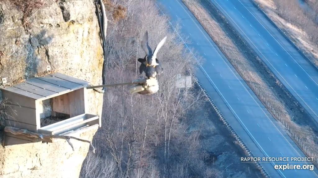 Minnesota. Boswell, G.S.B. Falcons, Hibbard,Xcel Energie (King/Sherco/Blackdog) Great River Energy, Rochester/ Mayo Clinic - Pagina 5 12_par10