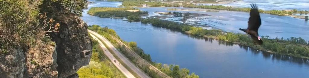 Minnesota. Boswell, G.S.B. Falcons, Hibbard,Xcel Energie (King/Sherco/Blackdog) Great River Energy, Rochester/ Mayo Clinic - Pagina 8 3612