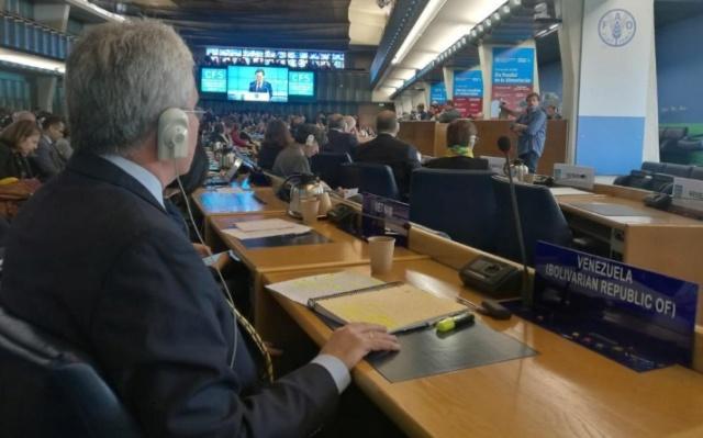 Ministro Castro Soteldo en la FAO
