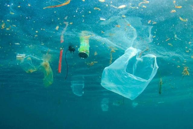 Océanos y Mares contaminados