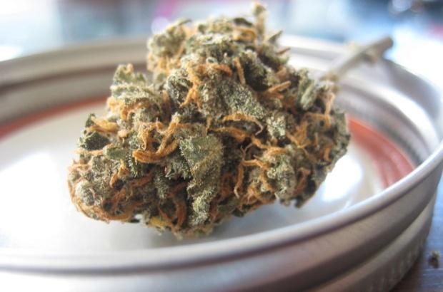 Aceite de Cannabis (CBD)
