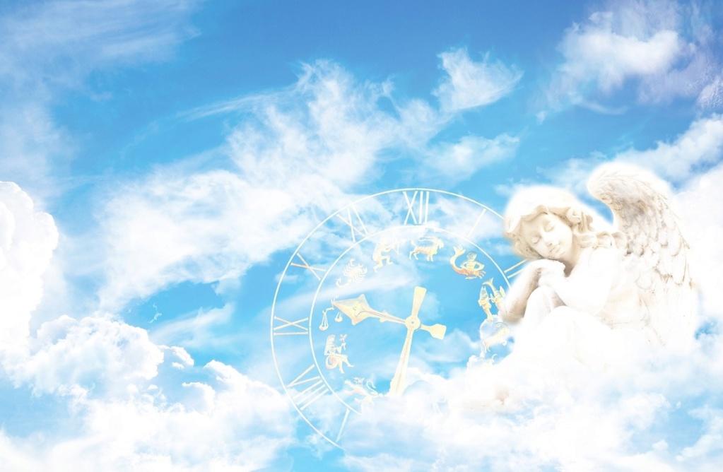 Angelskop za leto 2019 Angel-12