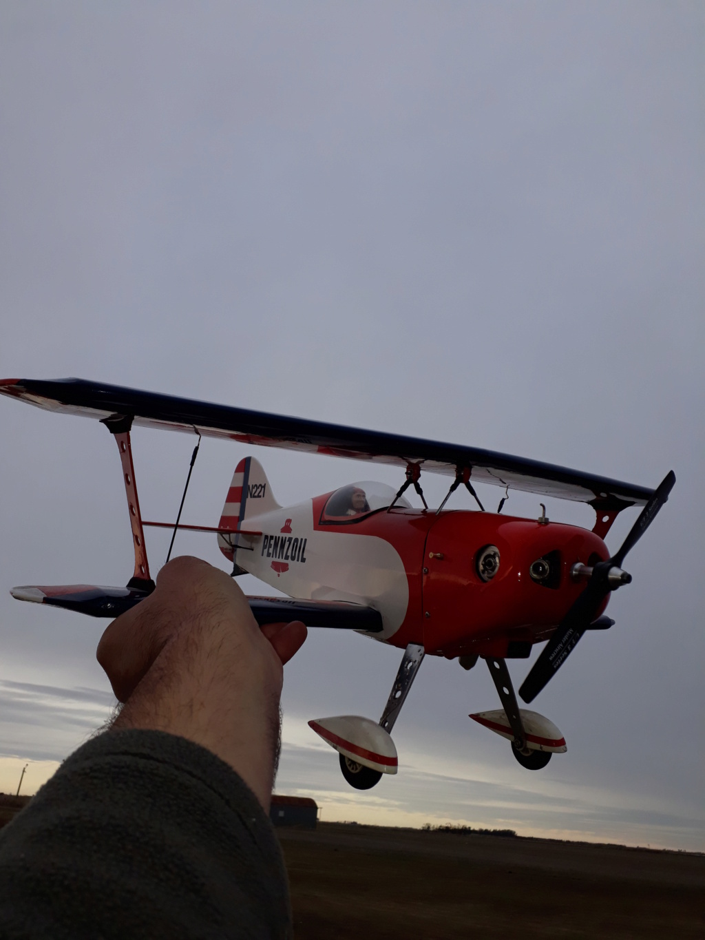 New Flight: Pitts -Skelton Aerobatic model  (page 9) - Page 10 20200736