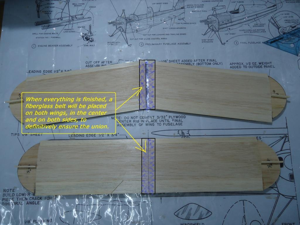 Pitts -Skelton Aerobatic model  - Page 4 Asai10