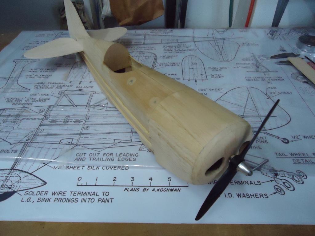 New Flight: Pitts -Skelton Aerobatic model  (page 9) Dsc03722