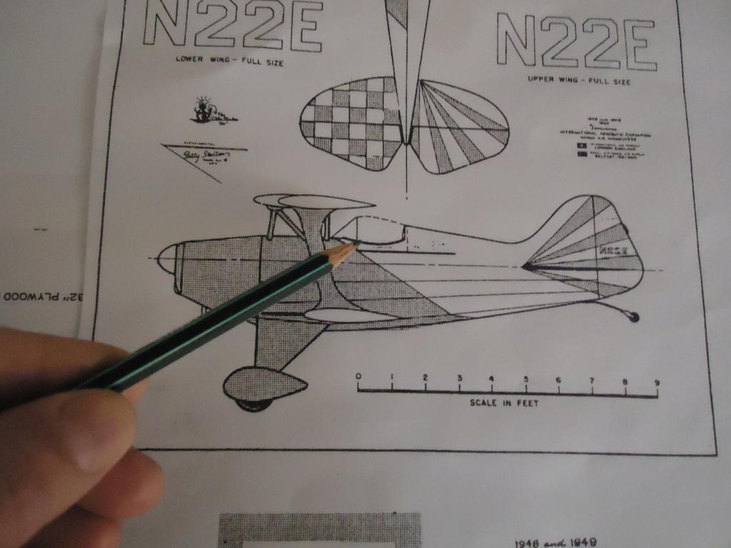New Flight: Pitts -Skelton Aerobatic model  (page 9) Dsc03724