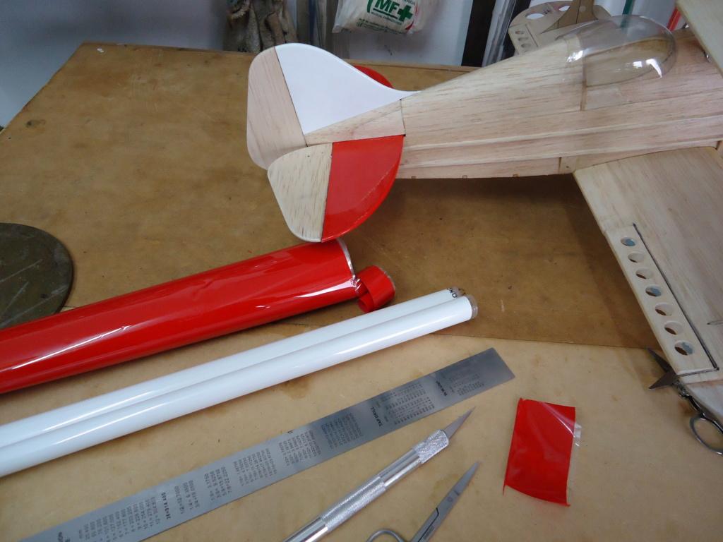 Pitts -Skelton Aerobatic model  - Page 4 Dsc04113