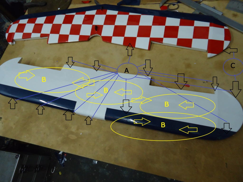 New Flight: Pitts -Skelton Aerobatic model  (page 9) - Page 5 Dsc04221
