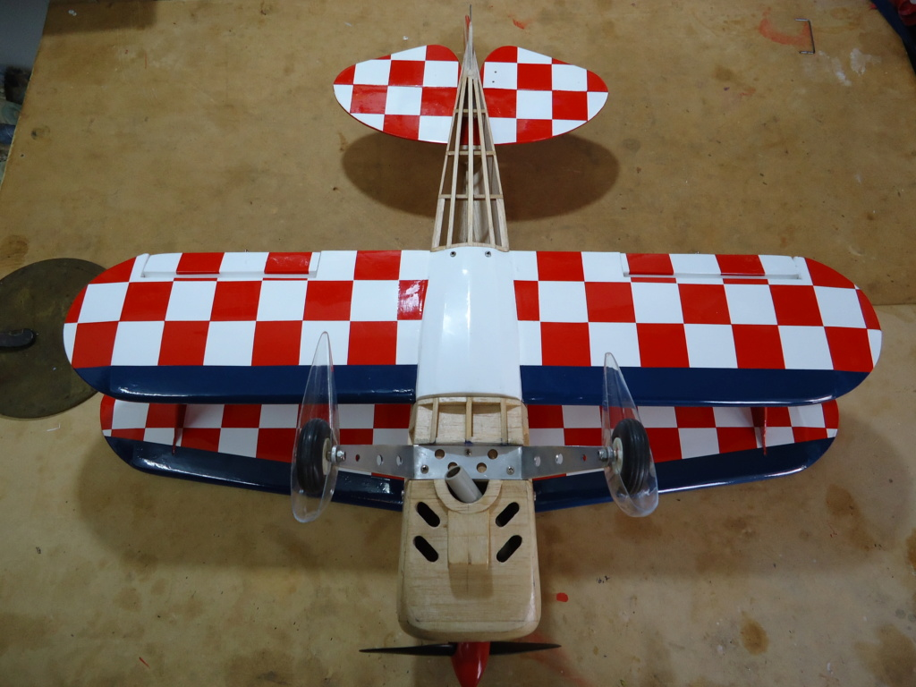 New Flight: Pitts -Skelton Aerobatic model  (page 9) - Page 5 Dsc04224