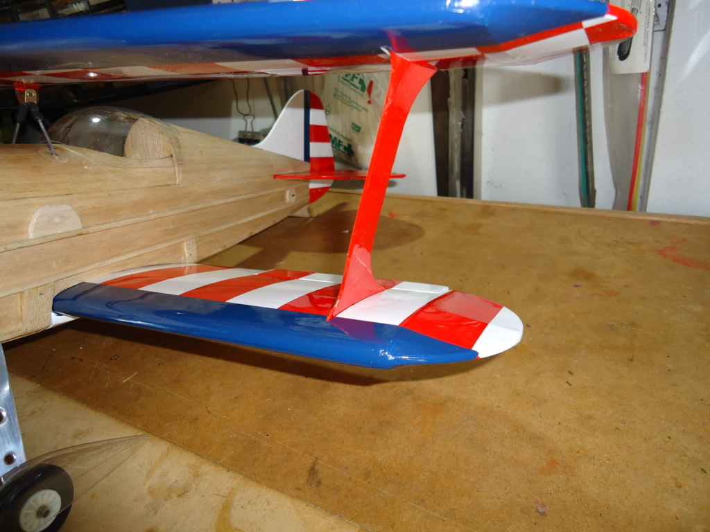New Flight: Pitts -Skelton Aerobatic model  (page 9) - Page 5 Dsc04225
