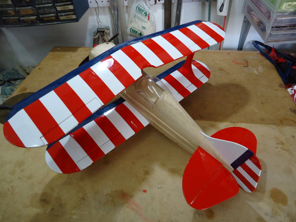 Pitts -Skelton Aerobatic model  - Page 5 Dsc04226