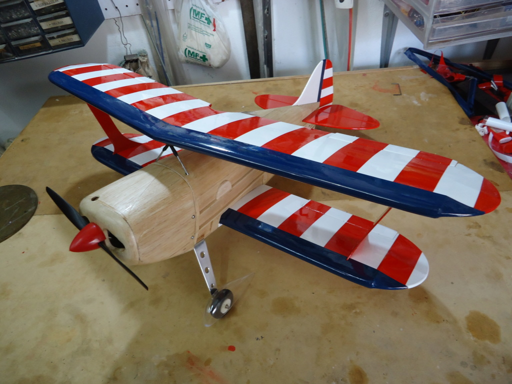 New Flight: Pitts -Skelton Aerobatic model  (page 9) - Page 5 Dsc04227