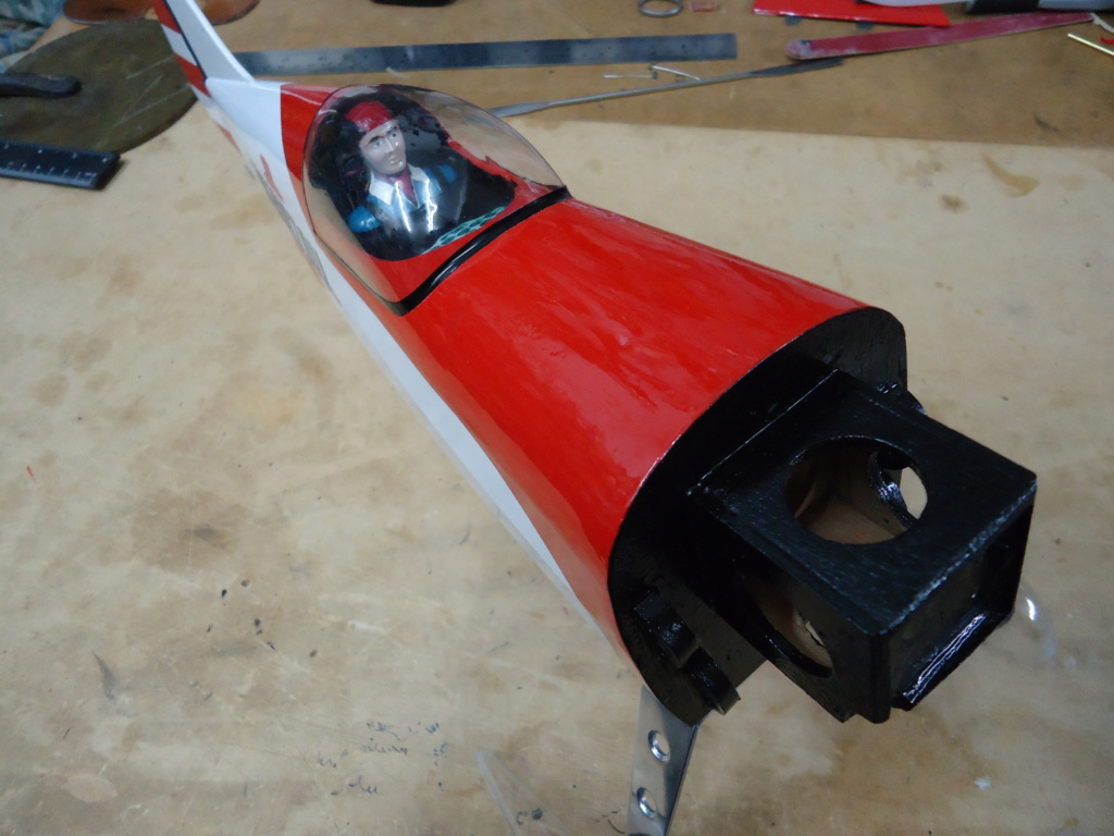 Pitts -Skelton Aerobatic model  - Page 5 Dsc04234