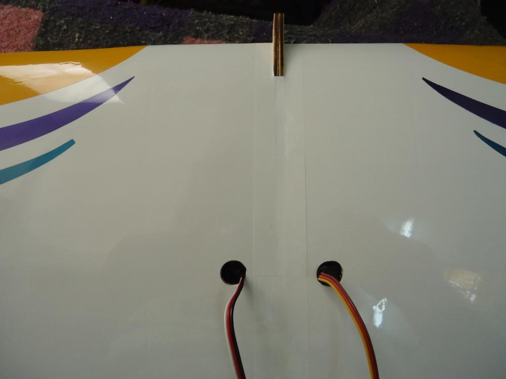 F1-Rocket EVO by Great Planes. - Page 2 Dsc04721