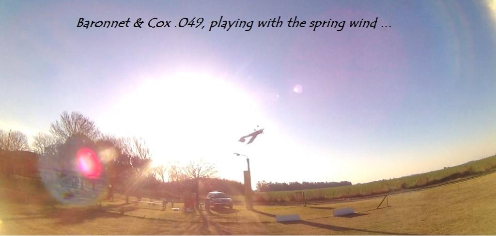 Cox engine .049 r/c & COX FUN MODEL Viento10
