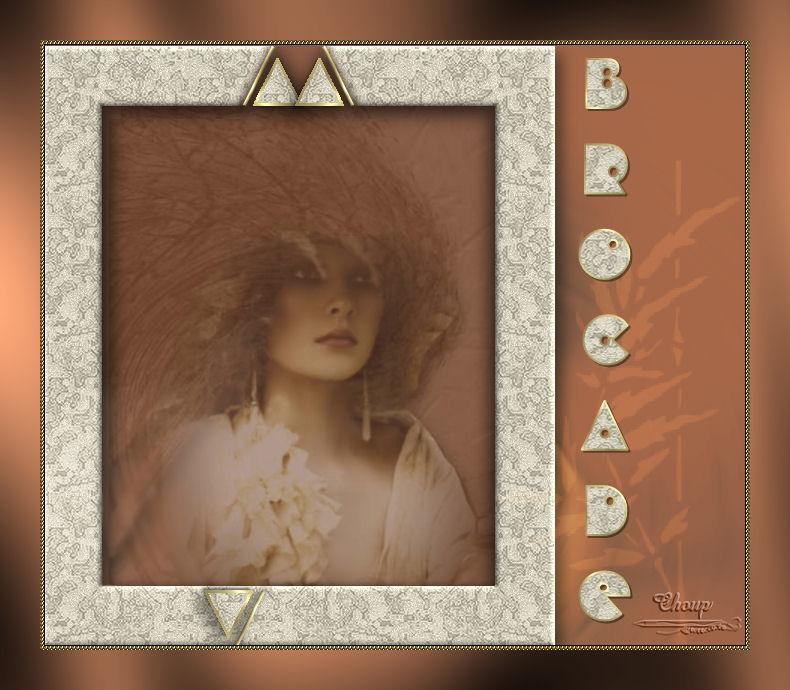14-Cours Psp-Cadre brocade - Page 5 Brocad10