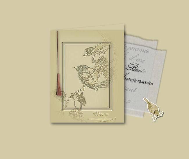 06-Cours-Psp-Créer une carte - Page 5 Oiseau12