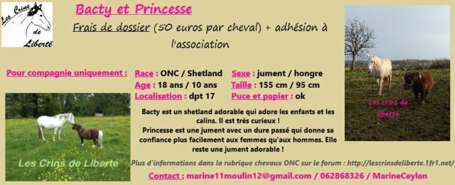 Dpt 17-Bacty 10 ans shetland - Princesse 18 ans ONC- réservé par P. Tattinger Sans_t10