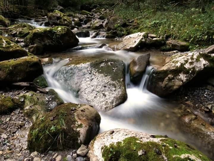 Rivière Suisse Fb_img16