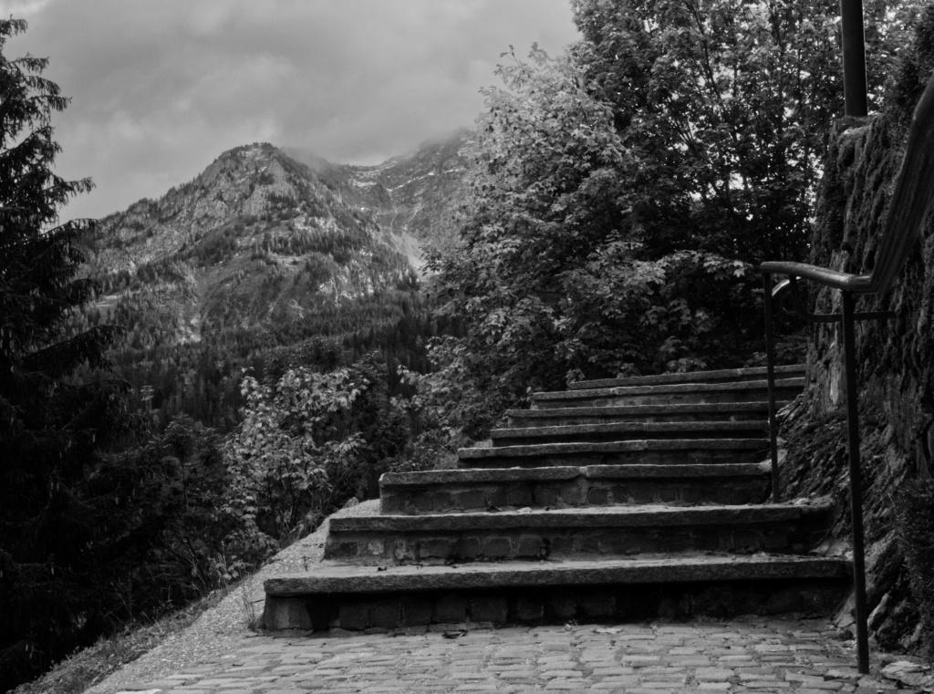 Itinéraire d'un Dimanche avec une certain inspiration ????... P1010313