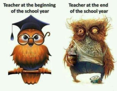 Bon courage les enseignants Teache10