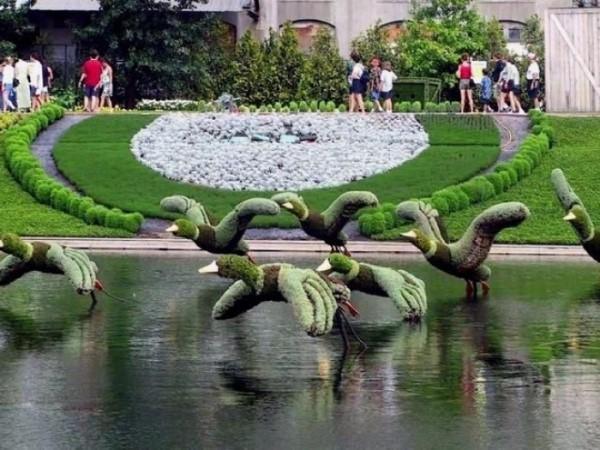 Jardins de rêve X_0328