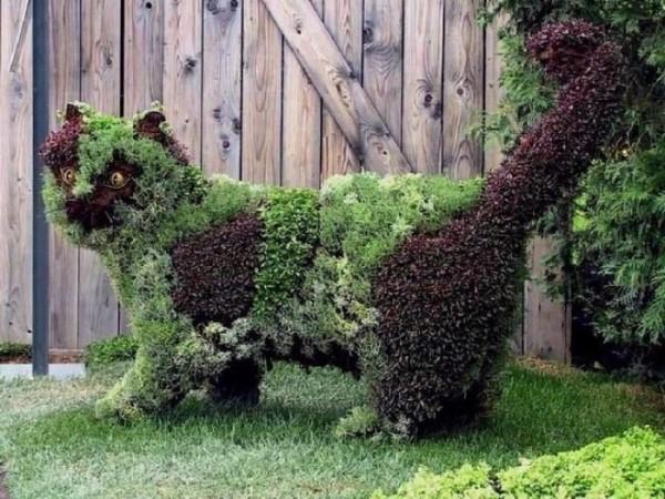Jardins de rêve X_0527