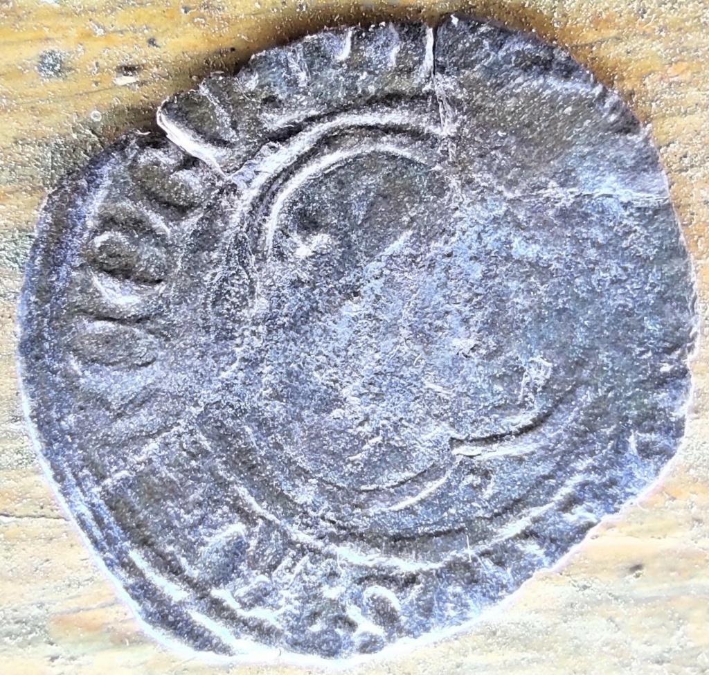 Denier Tournois Louis XI ou XII ou... ? 16154714