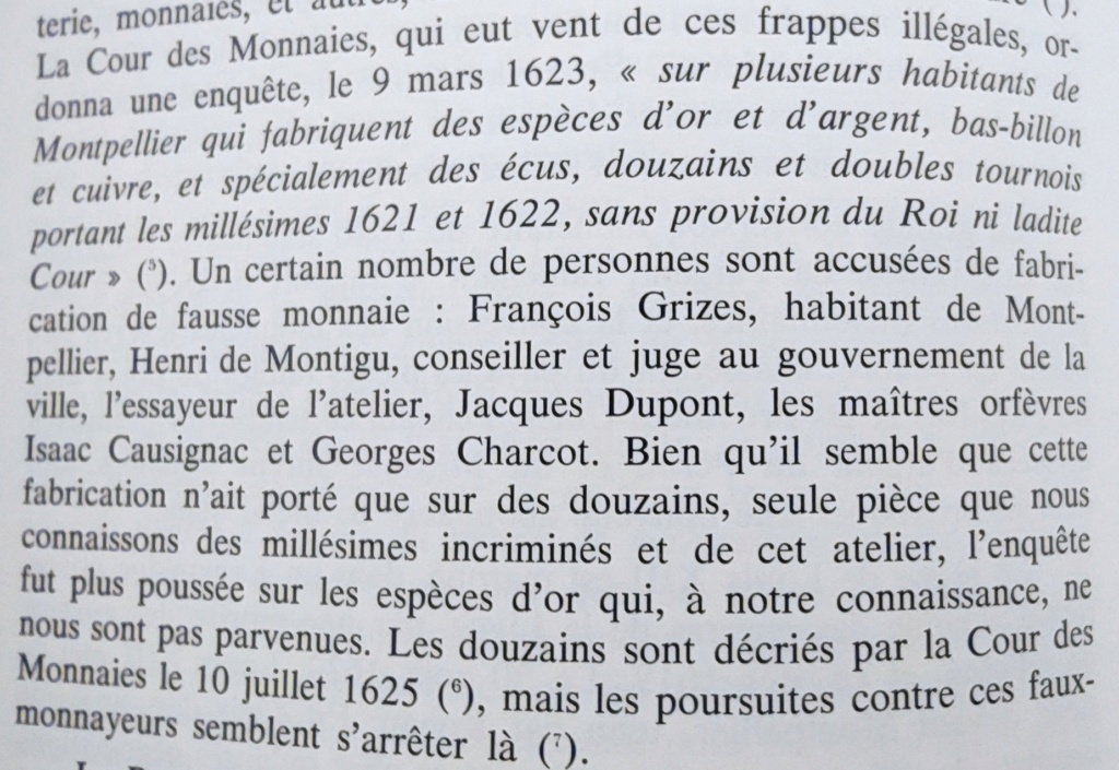Identification des Différents d'un Douzain Louis XIII Huguenot Montpellier 1622 Contremarqué en 1640 16226311