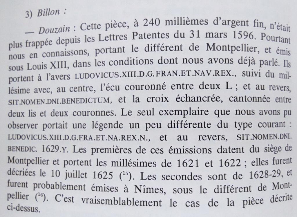 Identification des Différents d'un Douzain Louis XIII Huguenot Montpellier 1622 Contremarqué en 1640 16226312